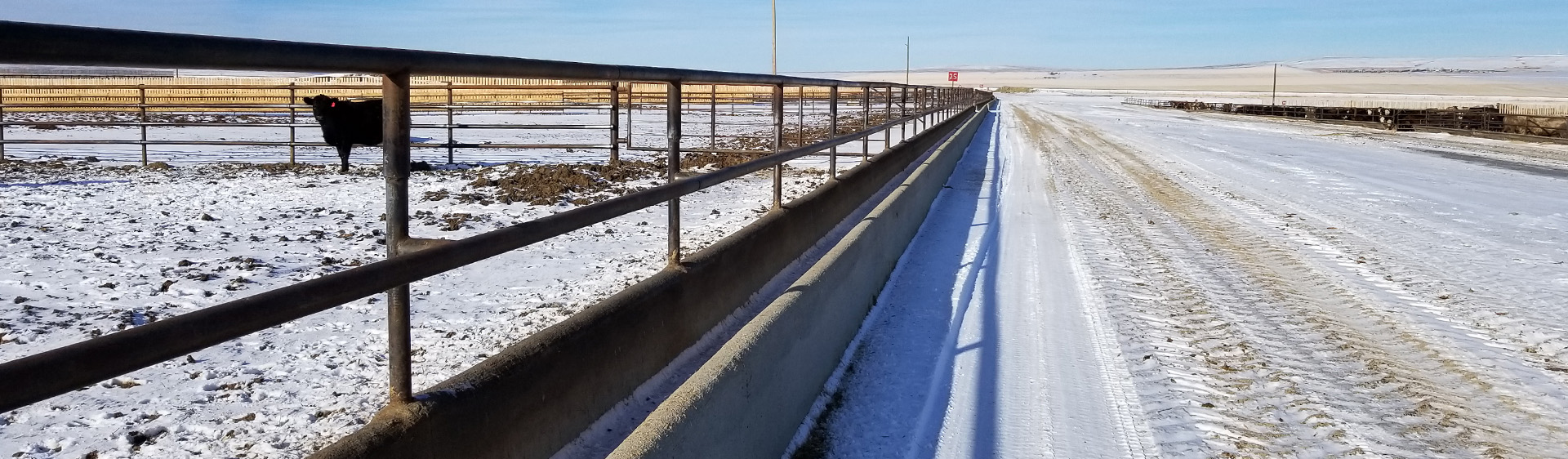Calgary  Concrete Feed Bunks  , Concrete Feed Pads  and  Slip Form Feed Bunks